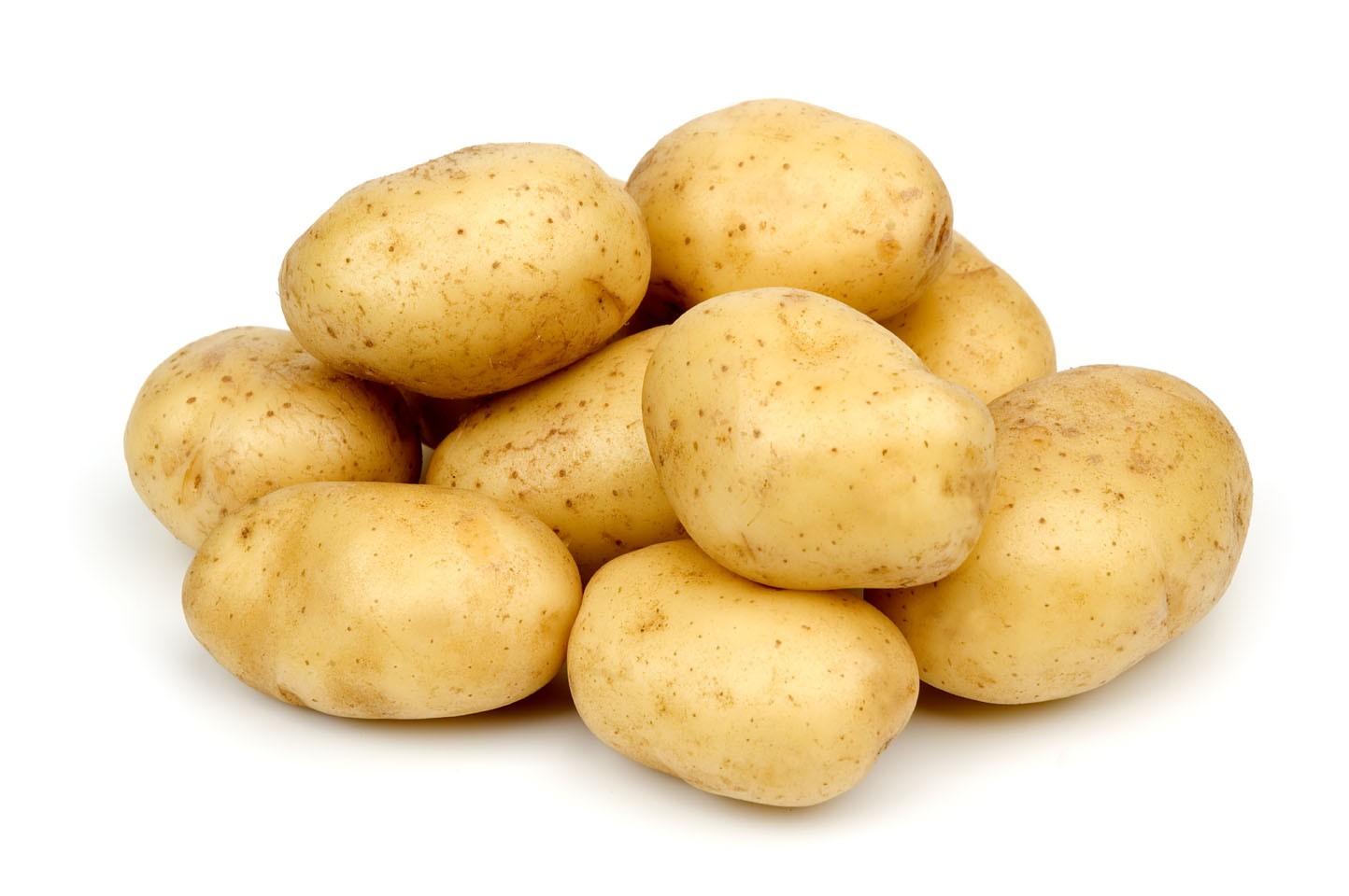 มันฝรั่ง potato